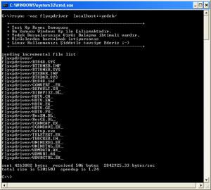 rsync-windows-daemon-3